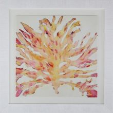 Modern Abstract Coral 1 37.5W x 37.5H