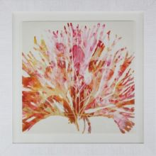 Modern Abstract Coral 2 37.5W x 37.5H